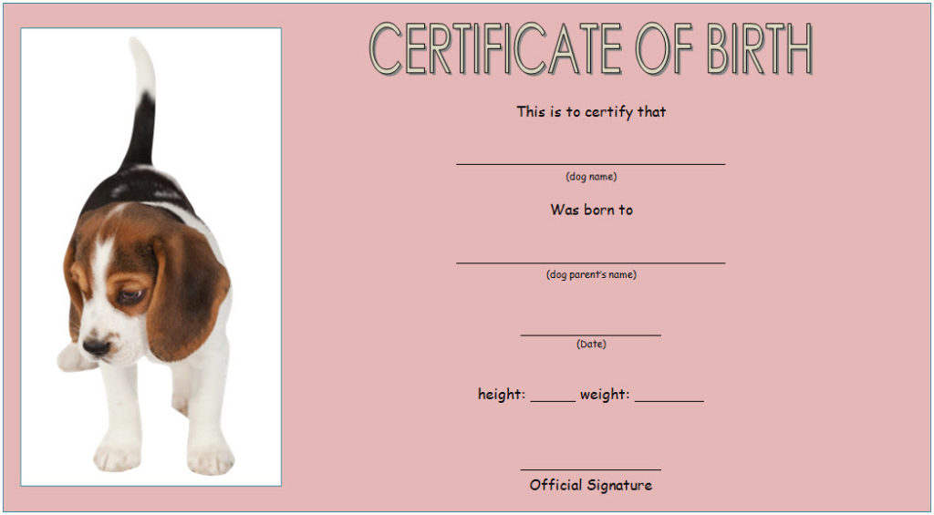 dog birth certificate template editable, puppy birth certificate template, free dog birth certificate template microsoft word, pet birth certificate template, dog birth certificate pdf, blank puppy birth certificate template, puppy birth certificate pdf, official dog birth certificate, free downloadable puppy birth certificate, puppy certificate templates, birth certificate template word, pet ownership certificate template, printable dog birth certificate