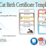 Kitten Birth Certificate Template [10+ Cute Designs FREE]