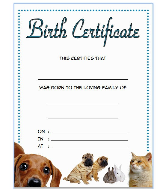pet birth certificate templates fillable, birth certificate template editable, printable pet birth certificate template, pet birth certificate template, puppy birth certificate pdf, pet birth certificate template for microsoft word, blank printable pet birth certificate, puppy birth certificate printable, free printable pet birth certificate templates, pet birth certificate printable, birth certificate template word, cat birth certificate free printable, official dog birth certificate, puppy certificate templates, dog birth certificate pdf