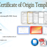 Certificate of Origin Template [8+ EXCLUSIVE DESIGNS]